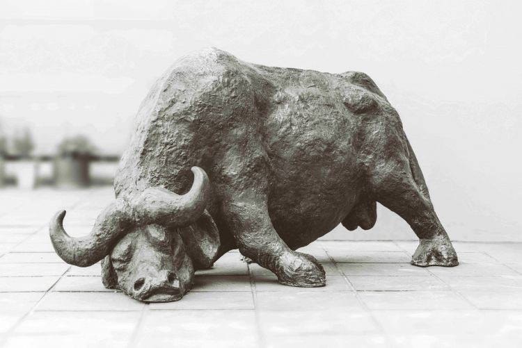 An icon resurrected: Lucas Sithole's highly important buffalo sculpture to go on sale