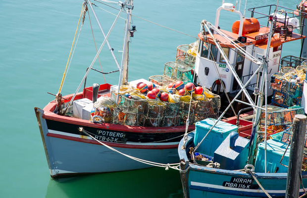 Diversification strategy pays off for Oceana
