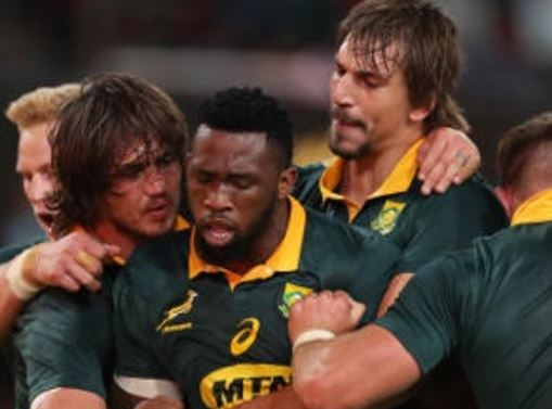 How they fared – the Springbok performance scorecard