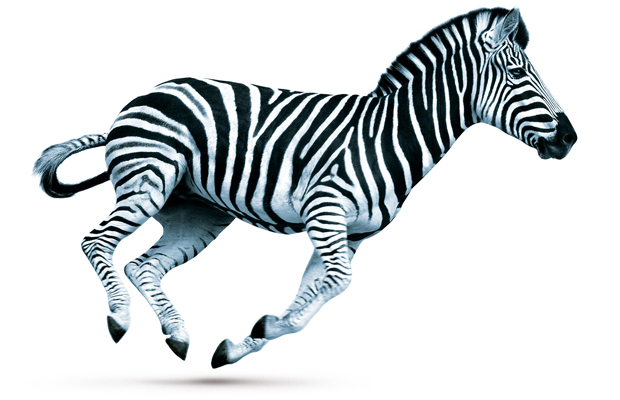 Investec reports second-half recovery
