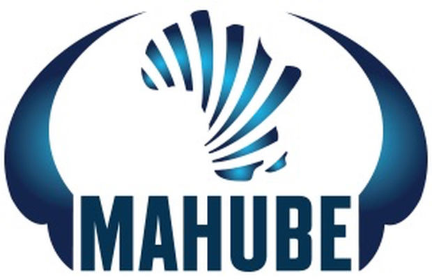 Mahube explores restructuring options