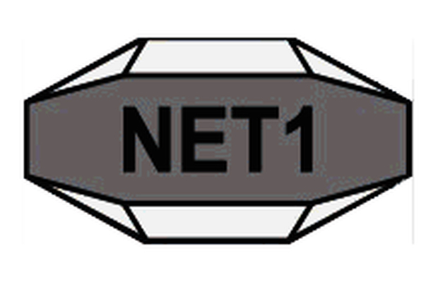 Net1 refocuses on SA business