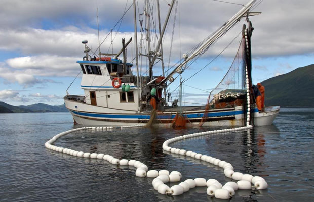 Premier Fishing lifted by squid acquisition