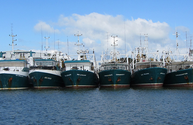 Sea Harvest casts its net wider in Australia