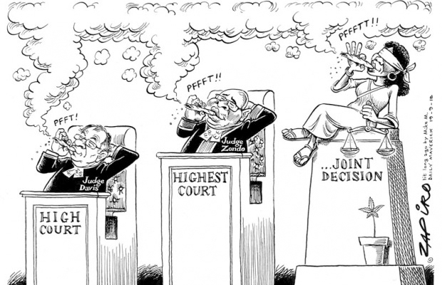 Zapiro: High Court